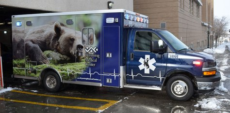 Ambulance_bear (1)
