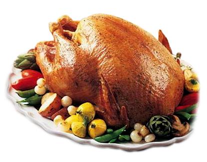 free range turkey
